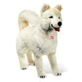peluche steiff chien esquimau studio debout blanc 524431