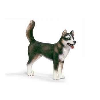 schleich-16371-Husky mâle