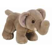 les authentiques elephant histoire d ours 2215