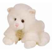 les authentiques chat histoire d ours 2216