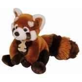 les authentiques panda rouge histoire d ours 2217