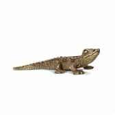 jeune crocodile schleich 14683