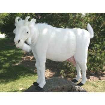 Automate chèvre blanche Anima -0347