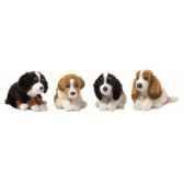acp chiens 29 cm 4 mod ass anna club lifelike 23 177 011