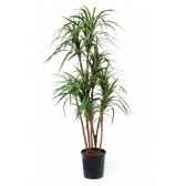 figurine kit a peindre chef de clan ier siecle av j c sg f033