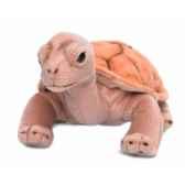 wwf tortue terrestre 20 cm 15 212 004