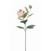 gw jurassic action ankilosaurus 19cm geoworld cl245k
