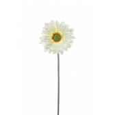 gw jurassic action protoceratops 25cm geoworld cl248k