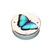 papillon bleu detectomat 35372