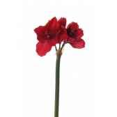 grincheux au piano 4032868