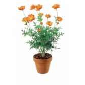 buste disney grand jester reine blanche neige 4025905