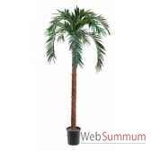 palmier x 21 540 cm en pot k louis maes 03709000k
