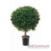 boule buis diam 80 cm in pot k louis maes 05567000k