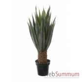 agave x34 en pot 105cm louis maes 40123605