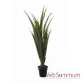 agave x30 en pot 150cm louis maes 40127605