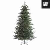 sapin de noeshake2shape macallan pine h305d155 vert tips 3342 nf 384750