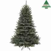 arbre dnoeforest frpine h120d99newgrowth blue tips 396 391394