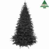 arbre dnoebristlecone fir h215d127 noir tips 916 399317