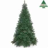 arbre dnoetuscan spruce h260d152vert tips 1508 792017