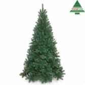 arbre dnoetuscan spruce h120d81vert tips 196 792166