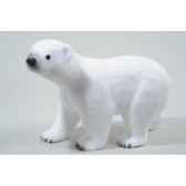 ours polaire et neige kaemingk 455845