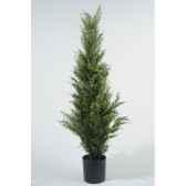 mini sapin conifere 75 cm everlands nf 685093