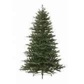 sapin kingswood 150 cm everlands nf 688550