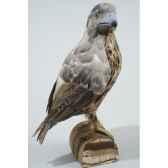 oiseau proie plume sur support kaemingk 727202