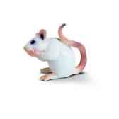 figurine schleich la souris blanche 14406