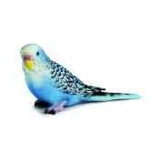 figurine schleich la perruche bleue 14409