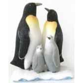 famille pingouin sur iceberg peha rn 57190