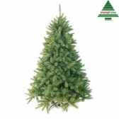 x mas tree forest frpine h185d130 blue tips 942 edelman 388486