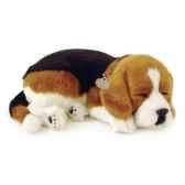 beagle perfect petzzz 65401