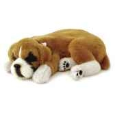 boxer perfect petzzz 65403