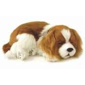 cavalier king charles perfect petzzz 65405