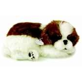 shih tzu perfect petzzz 65417
