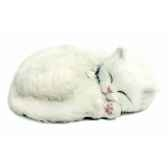chat blanc perfect petzzz 65434