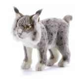 peluche lynx gris animaux 5185