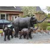 couple d elephants b944