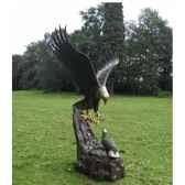 aigle avec nid b1024
