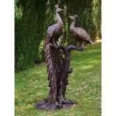 2 paons sur tronc d arbre b1116