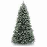 sapin poly downswept douglas fir blue hook on h152cm van der gucht 31pedb50