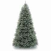 sapin poly downswept douglas fir blue hook on h243cm van der gucht 31pedb80