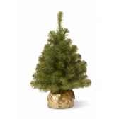 sapin new noble spruce tree in gold cloth bag h61cm van der gucht 31nnb2gd