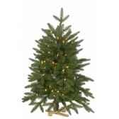 sapin rago pe table tree with wooden base h91cm 100van der gucht 31rag091l