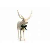 renne blanc anima 5924