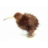 kiwi anima 5980