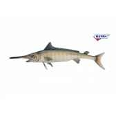 marlin bleu anima 6051