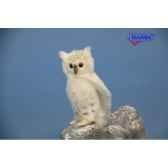 chouette blanche anima 6155