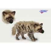hyene anima 6210